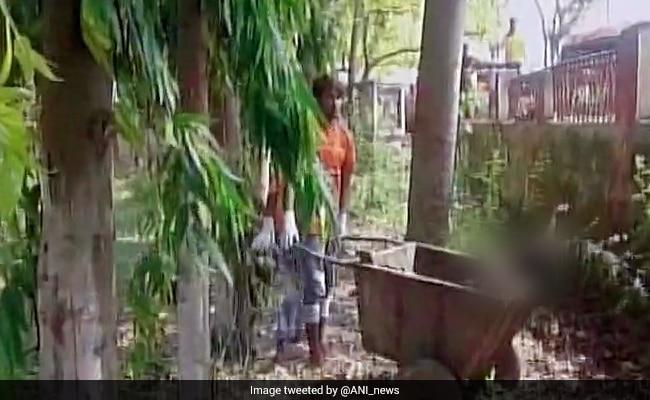 बिहार : पोस्टमार्टम के लिए कचरा गाड़ी में ले जाया गया महिला का शव, जांच के आदेश