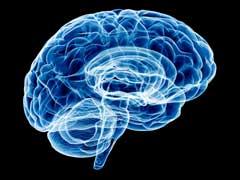 ड्रम बजाने वाले लोगों के दिमाग का स्ट्रक्चर और काम सामान्य लोगों से होता है अलग- स्टडी