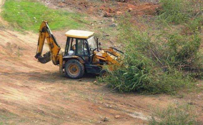 Bulldozers Raze Thousands Of Trees In Haryana, Activists Cry Foul