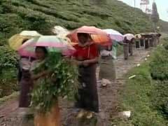 वर्ल्ड हेरीटेज दार्जीलिंग हिमालयन रेलवे को लेकर चिंतित है UNESCO
