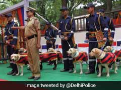 Guard Of Honour Welcomes Delhi Police's Dog Squad To Their New Home