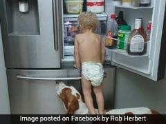 नन्हे बच्चे और डॉगी ने लगाई जुगत, फ्रिज से कुछ इस तरह चुराया खाना...