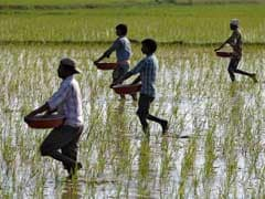 Maharashtra's Farm Loan Waiver Scheme To Be Implemented From October 15, Says Minister