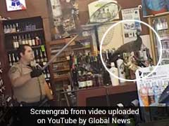 Peahen Racks Up A Bill Of $500 At Liquor Store. It's Not What You Think