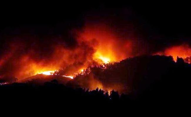 Huge Portugal Forest Fires Atleast Kill 57, Injure Scores