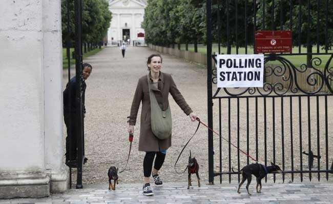 Pooches Lift Spirits At Polling Stations During UK Election