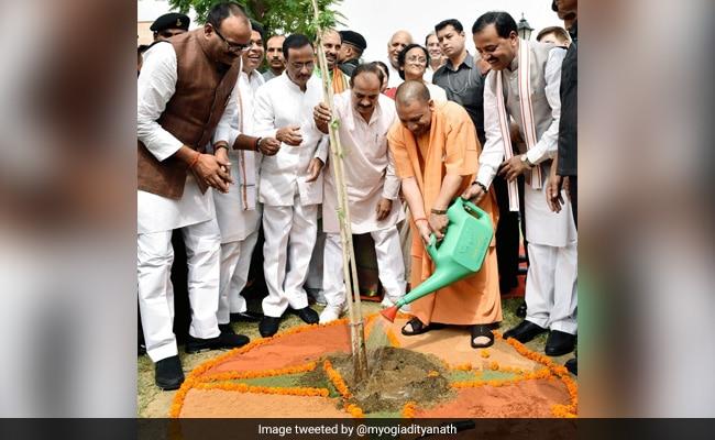 Yogi Adityanath's Birthday Message To Farmers: Plant 10 Saplings Each