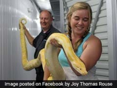 Officer Gets Call About Storage Unit. Inside, A 11-Foot Python
