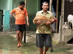 Assam Floods: One More Person Dead But Situation Improves