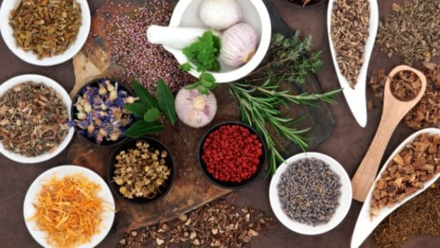 5 Ayurvedic Herbs You Can Use to Fight Stress and Calm Your Mind