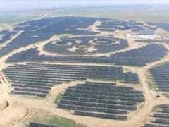 Paw Power: China Opens Panda-Shaped Solar Power Plant