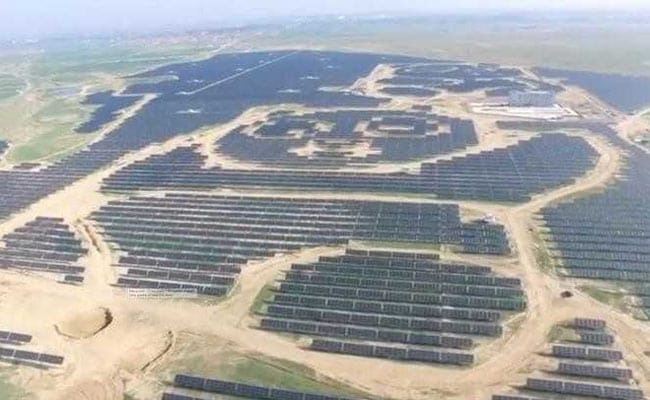 Paw Power: China Opens Panda-Shaped Solar Power Plant