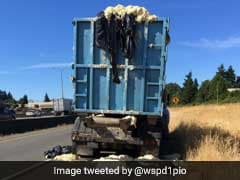 Heat Causes Dough In Truck To Rise, Overflow. You 'Knead' To See Pics