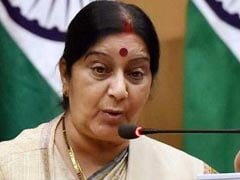 India Raised Tibet, Stapled Visa Issues With China: Sushma Swaraj