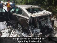Truck Carrying Eels Overturns, Covers Cars In Slime. Internet Shudders