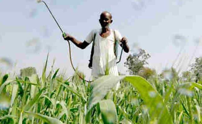 सरकार की किसानों को सौगात, उवर्रक पर जीएसटी दर 12 से घटाकर 5 प्रतिशत तय की