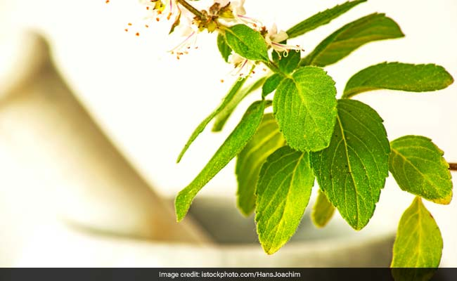 Chinese Herb May Help Fight Tooth Decay