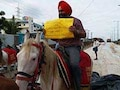 To Protest Bad Roads, Hyderabad Techies Rode Horses To Work