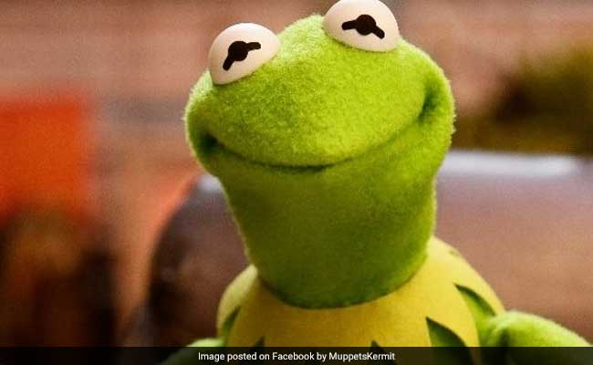 Kermit The Frog And His Creator Honoured By New York Museum