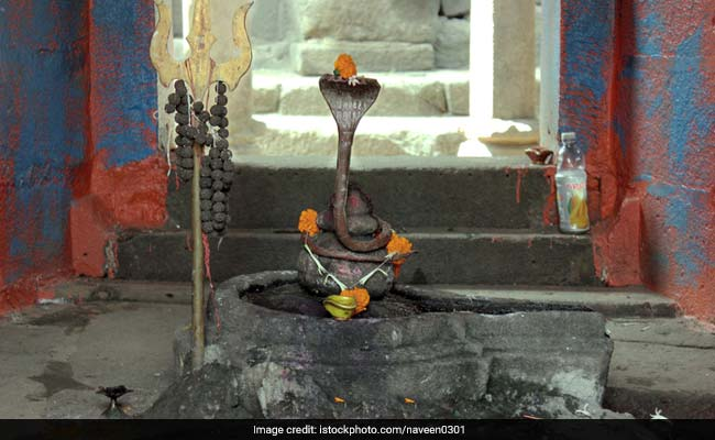 Nag Panchami 2017: Why Do People Offer Milk To Snakes On Nag Panchami