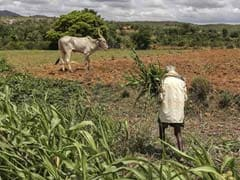 Government Steps Up Rural Funding In Budget 2019: What Experts Say