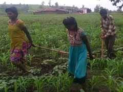 Help Reaches Madhya Pradesh Farmer Who Used Daughters To Pull Plough