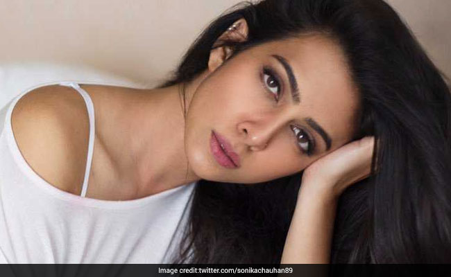 Court Clears Way For Actor Vikram Chatterjee Trial In Sonika Chauhan Case
