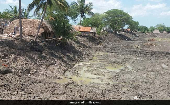 Crowdfunding Restores Ponds In Drought-Hit Tamil Nadu