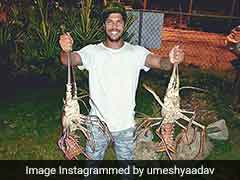 Fielding Skills Off The Ground. Umesh Yadav Catches Two Giant Lobsters