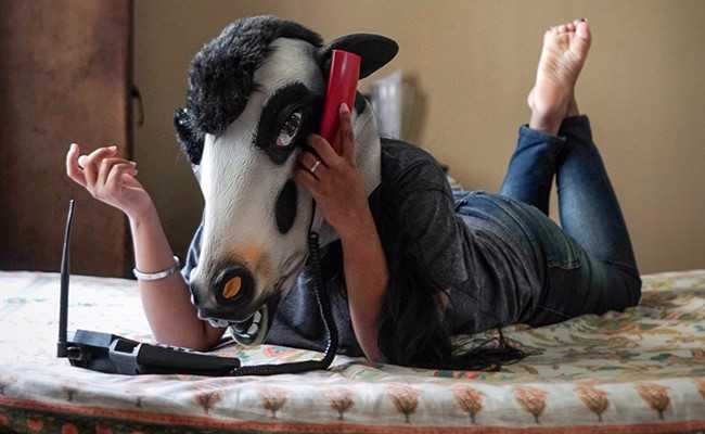 Women Don Cow Masks To Show They Are Less Safe Than Cattle