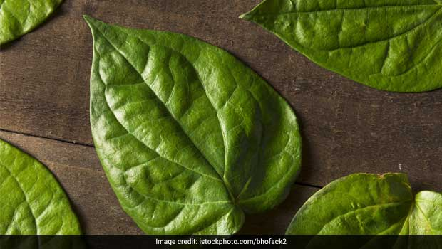 Why is the Betel Leaf (Paan Patta) So Significant in Hindu