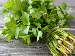 Coriander or Cilantro: Uses and Benefits for Skin and Health