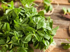 6 Fenugreek Side Effects That You Should Know About