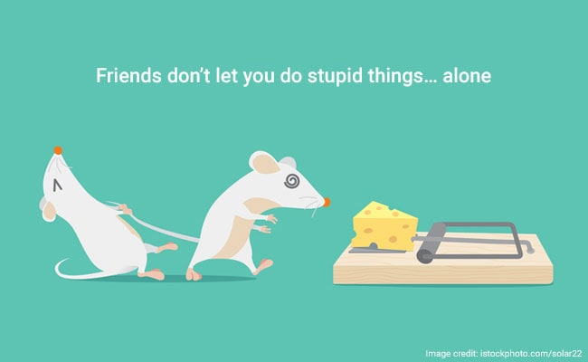 Special Friend Funny Quotes: Happy Friendship Day 2017: 11 Friendship Quotes To Send To
