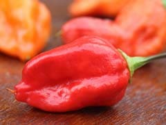 Bhoot Jolokia (Ghost Chilli Pepper): Do You Have the Guts to Try it?
