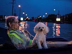 22 Confirmed Dead From Hurricane Harvey, Houston Mayor Imposes Nightly Curfew
