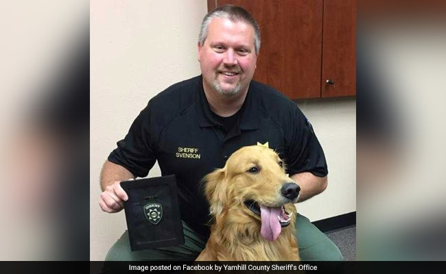Dog hailed as hero after digging up $85K worth of heroin