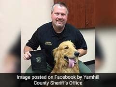 Dog Finds Drugs Worth $85,000 While Digging, Becomes K-9 Narcotics Officer