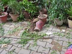 दिल्ली: मणिपुर के पूर्व मंत्री के बेटे की रेस्टोरेंट की छत से गिरकर मौत
