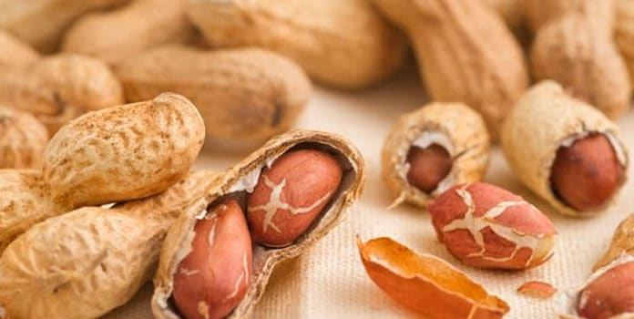 6 Foods That Are Known to Trigger Allergies