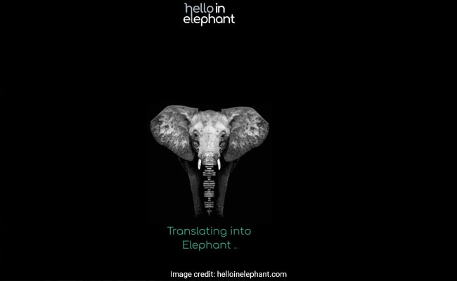 speak elephant screenshot 2 650