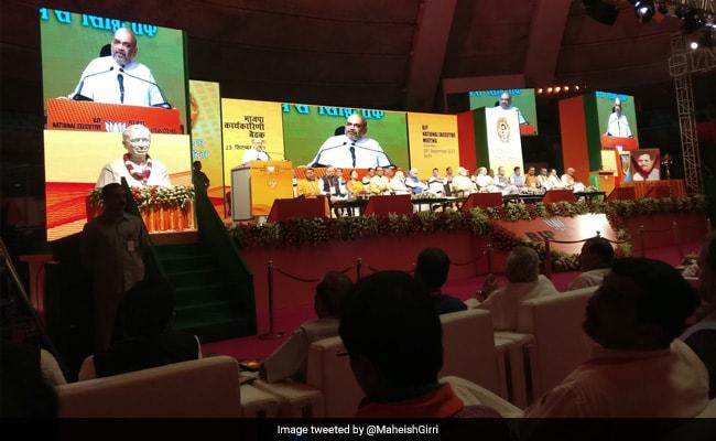 At Opening Speech At Huge BJP Meet, Amit Shah Targets Rahul Gandhi