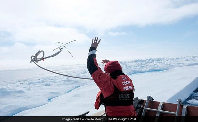 arctic wp