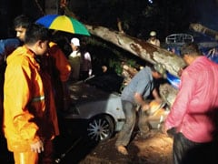3 Crushed To Death As Tree Falls On Car During Thunderstorm In Bengaluru