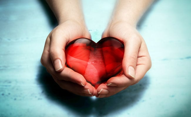 Stem Cells Can Create An Adult-Like Human Heart Muscle: 5 Healthy Foods For Your Heart