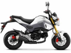 Honda Grom Motorcycle, Honda Scoopy Scooter May Not Be Launched In India