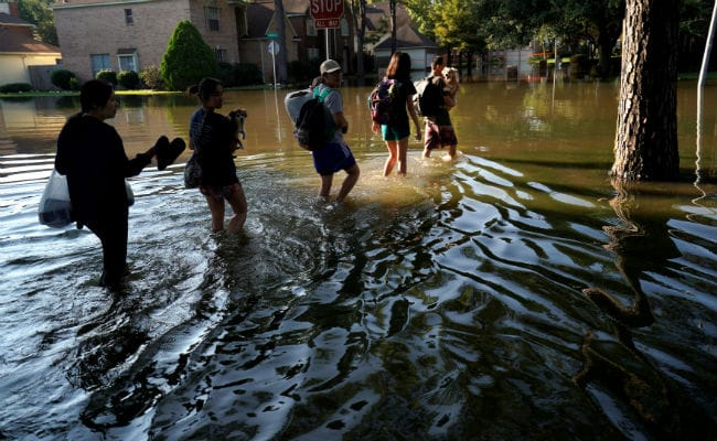 'Snakes In Water, Spiders Crawling Up Walls': Texas Battles Harvey; 44 Dead