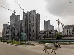 'A Human Problem Of High Magnitude': Top Court Asks Jaypee To Deposit 2,000 Crores