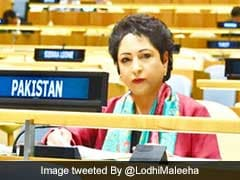 India 'Mother Of Terrorism,' Says Pak After Sushma Swaraj's UN Speech