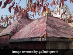 'पालनपीठ' के रूप में प्रसिद्ध है गया का मां मंगलागौरी मंदिर, यहां पूरी होती है हर मनोकामना